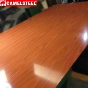 grainy prepainted galvalume steel coil